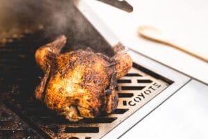 Grilled Whole Turkey